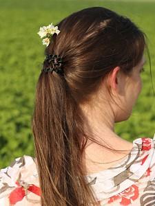 Kartoffelblüte im Haar