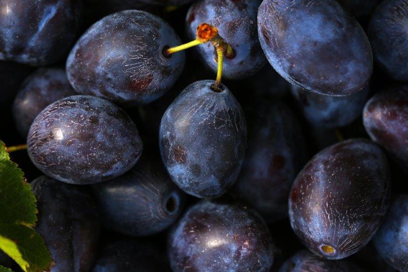 Start: Früchte waschen und entstielen